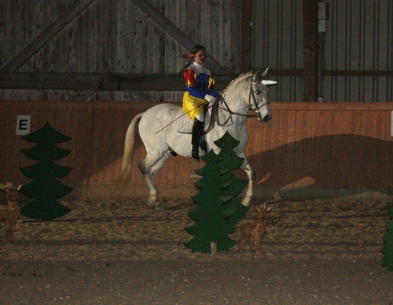 Weihnachtsfeier 2011 (5)